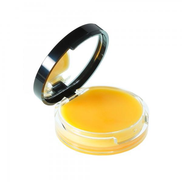 Delarom Baume Protecteur Lèvres